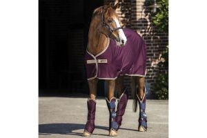 Horseware Amigo Jersey Cooler Fig/Navy/Tan