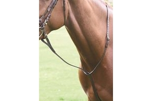 Shires Equestrian - Blenheim Standing Martingale - Black - Size: Pony