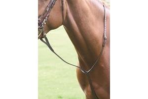 Shires Equestrian - Blenheim Standing Martingale - Black - Size: Cob