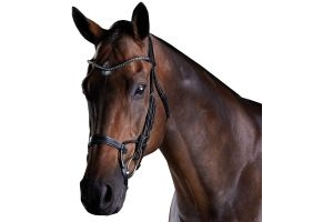 Collegiate ComFiTec Crystal Bridle Black
