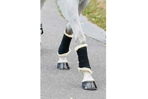 Weatherbeeta Pure Wool Lined Exercise Boots (Cob) (Black)