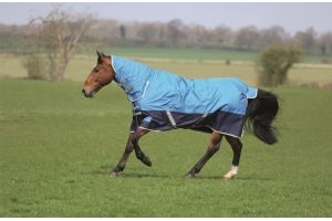 Bridleway Ontario Lightweight Combo Turnout Rug: Royal, Navy & Grey: 5 ft 6