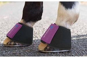 Shires Arma Neoprene Over Reach Boots - 1898, Plum, Pony