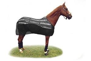 LeMieux Unisex's Carbon Cooler Rug Horse, Black, 5'9
