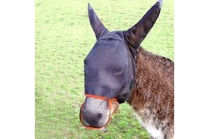 equilibrium - Field Relief Max Horse Fly Mask Donkey Small Black/Orange
