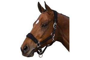 Roma Fleece Shaped Headcollar (Full) (Black)