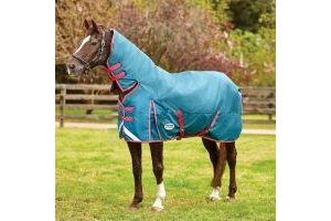 WeatherBeeta ComFiTec Plus Dynamic 360g Heavy Weight Combo Neck Turnout Rug Teal/Cerise/Yellow