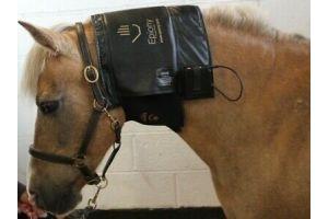 Epiony Portable Heat Pad, ,Electric Heat Pad, Grooming, Horse, FREE UK POSTAGE*