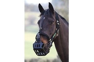 Greenguard Headcollars - Black Small Pony