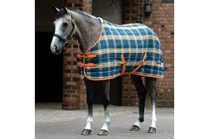 Saxon Pp Stable Standard Neck Medium Ii - Dark Blue/Pebble/Orange Plaid - Size: 6'0