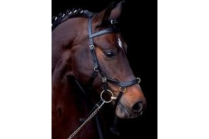 Horseware Rambo Micklem Multibridle Black Full