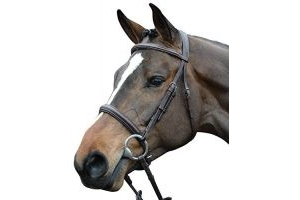 Collegiate Comfort Crown Padded Raised Cavesson Bridle Brown Warmblood