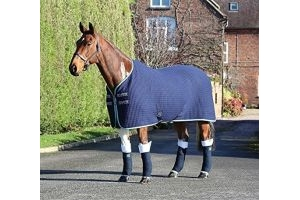 Shires Tempest Original Tech Cooler Rug - Navy/Green/Grey: 6ft0