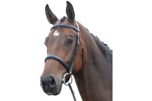 Kincade Raised Cavesson Bridle Black