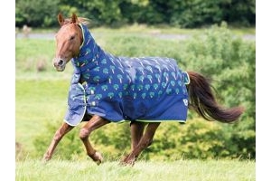 Bridleway Ontario 100g Combo Turnout Rug Carrot: 6 ft