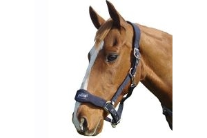 Roma Fleece Shaped Headcollar - Lime - Pony