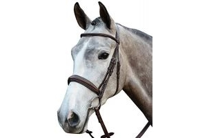 Collegiate Mono Crown Padded Raised Cavesson Bridle Brown Cob
