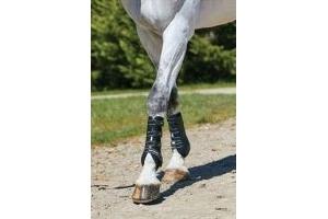 Weatherbeeta Hard Shell Dressage Boots-Cob White