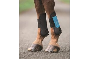 Shires ARMA Tendon Boots - Full-Black/Blue Full