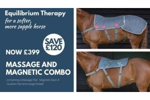 Equilibrium Therapy Massage Pad + Magnetic Pad