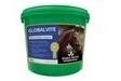 Global Herbs GlobalVite for Horses - Powder - 3kg Tub