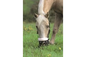 Shires Deluxe Grazing Muzzle Black Pony