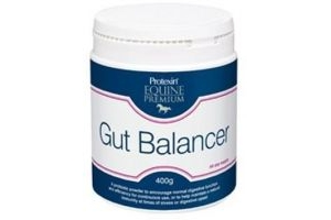 Protexin Gut Balancer For Horses 400g