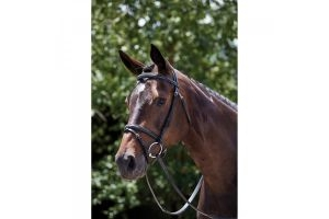 Kincade Raised Padded Fancy Stitch Flash Bridle
