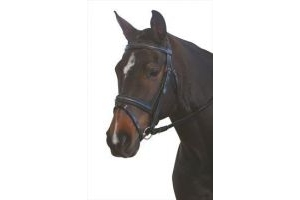 Kincade Padded Headpiece Flash Bridle with Reins-Black Cob