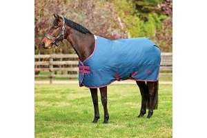 Saxon 600D Combo Neck Heavy 300g Turnout Rug - Dark Blue/Claret / 6'9
