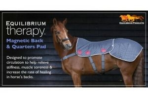 Equilibrium Therapy Magnetic Back and Quarter Pad