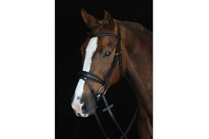 Collegiate Unisex Mono Crown Padded Raised Flash Bridle Black Full