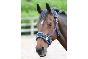 Shires Fleece Lined Lunge Cavesson Navy