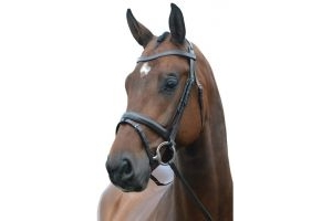 Kincade Dressage New Bridle Brown