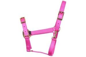 Shires Pro Adjustable Headcollar Pink