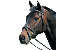 Kincade Raised Flash Bridle Black