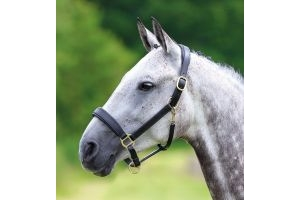 Shires Blenheim Leather Travel Headcollar: Black: Pony
