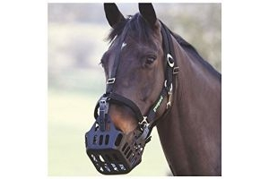 GreenGuard Halter-Black Cob