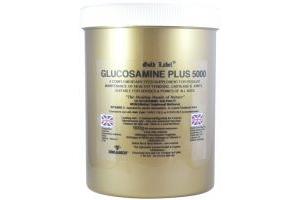 Gold Label Glucosamine Plus 5000 Horse Supplement 900g