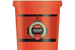 Carr & Day & Martin Cornucrescine Daily Hoof Supplement - Healthy Hooves - 6kg