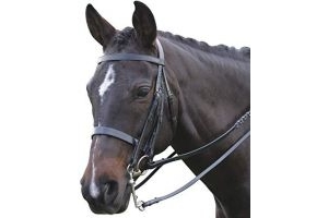 Kincade Show Weymouth Bridle Black Warmblood
