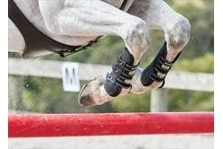 Weatherbeeta Pro Air Open Front Boots-Warmblood Black