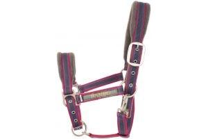 Horseware Rambo Padded Headcollar Charcoal/Blue/Raspberry