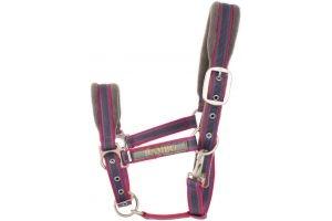 Horseware Rambo Padded Headcollar Charcoal/Blue/Raspberry