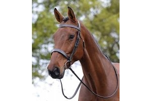 Kincade Hunt Style Cavesson Bridle - Brown Cob