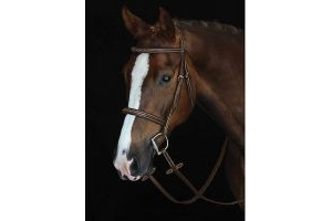 Weatherbeeta Collegiate Mono Crown Fancy Stitched Raised Cavesson Bridle Brown Warmblood