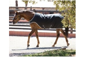 Horseware Amigo 200g Medium Weight Walker Rug Black/Silver