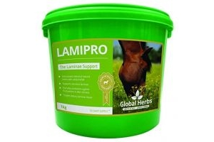 LamiPro Supplement Powder by Global Herbs (1KG)