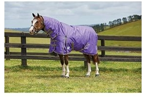 Weatherbeeta Comfitec Medium Classic Combo Neck Turnout Rug (5 ft 3) (Violet/Grey/Yellow)