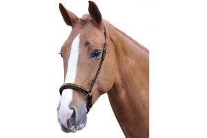 Blenheim Padded Drop Noseband Havana